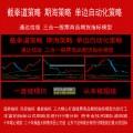 湘186.通达信截拳道策略 期海策略 单边自动化策略 三合一决策终端 股票商品期货现货指标模型